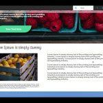Builderall Toolbox Tips 4 Conteúdo do site