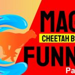 Builderall Toolbox Tips Tuesday Night Training:  Magic Funnels in Cheetah